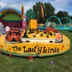 Ladybirds Children's Roundabout